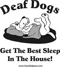 Deaf Dogs Sleep Best