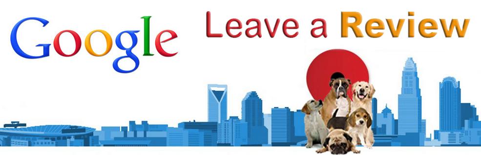 Dog Training Columbus Ohio Google