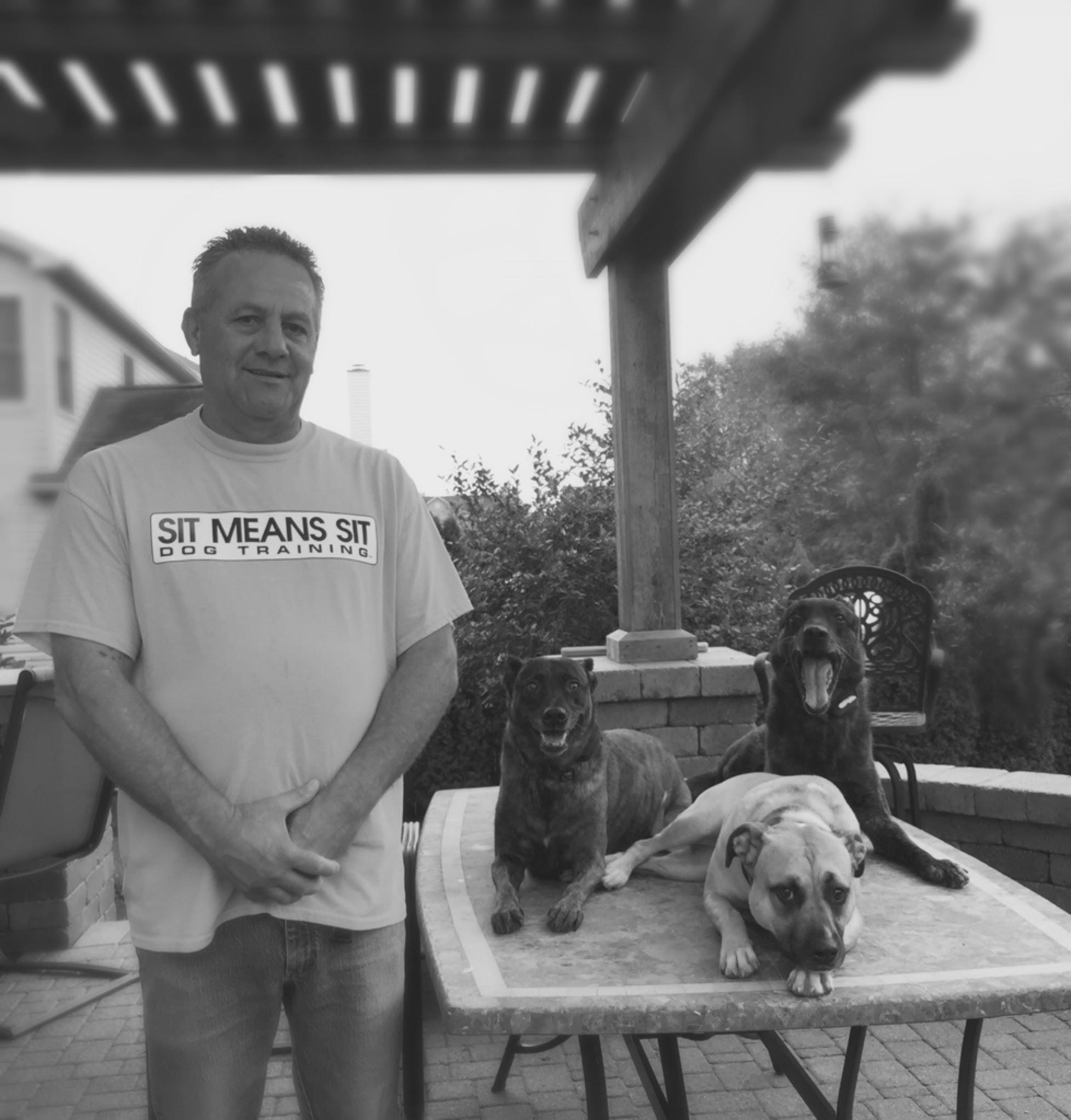 Dog Training Classes Columbus Ohio