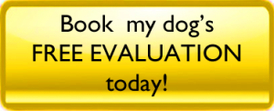 Book my dog's free evaluation