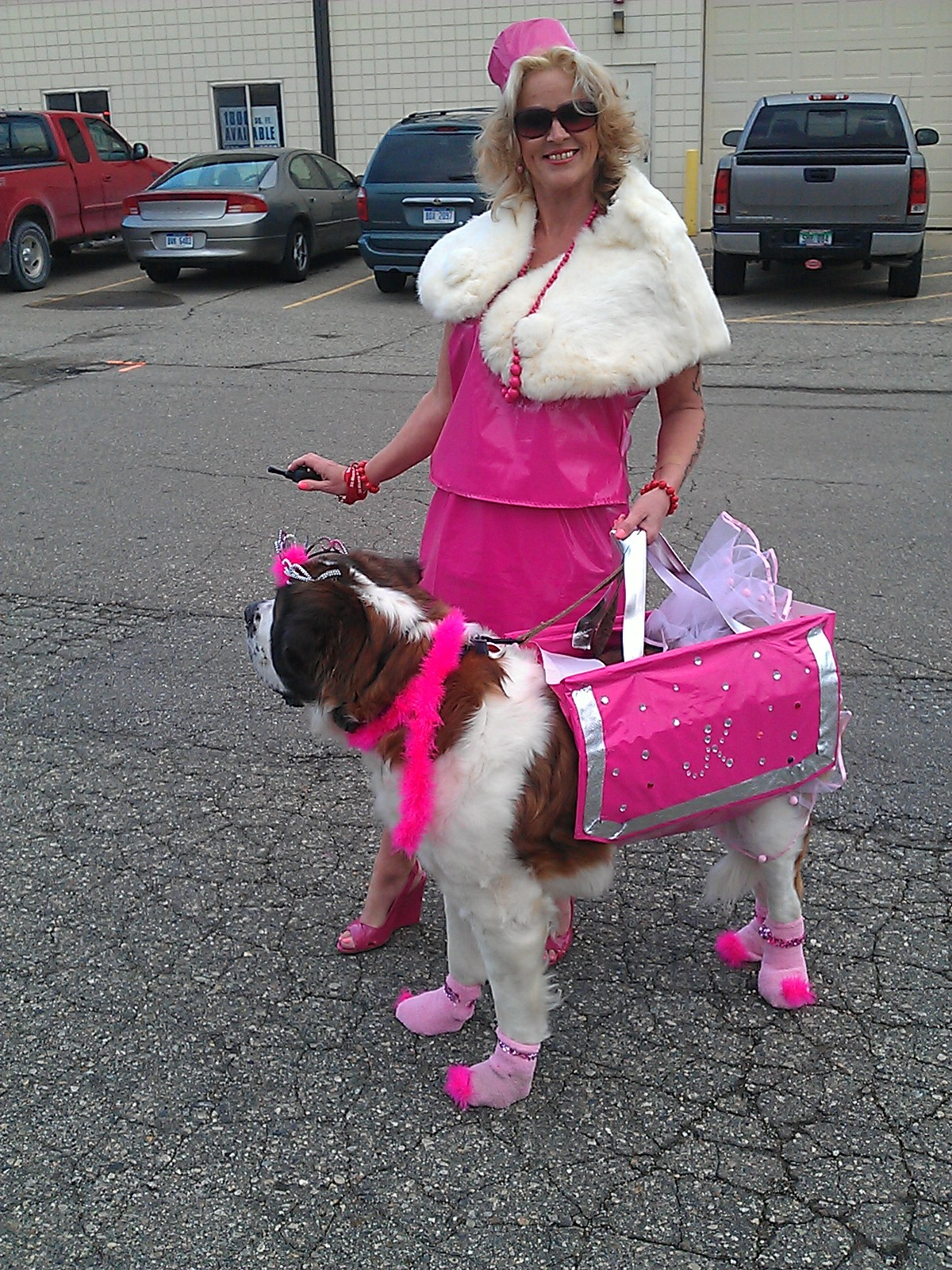 Dogs In Purses Best Purse Image Ccdbborg