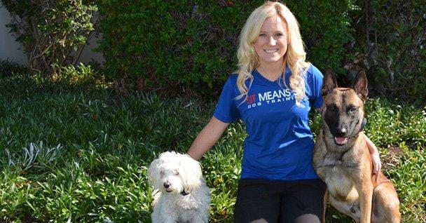 Aggressive Dog Training Orange County Ca