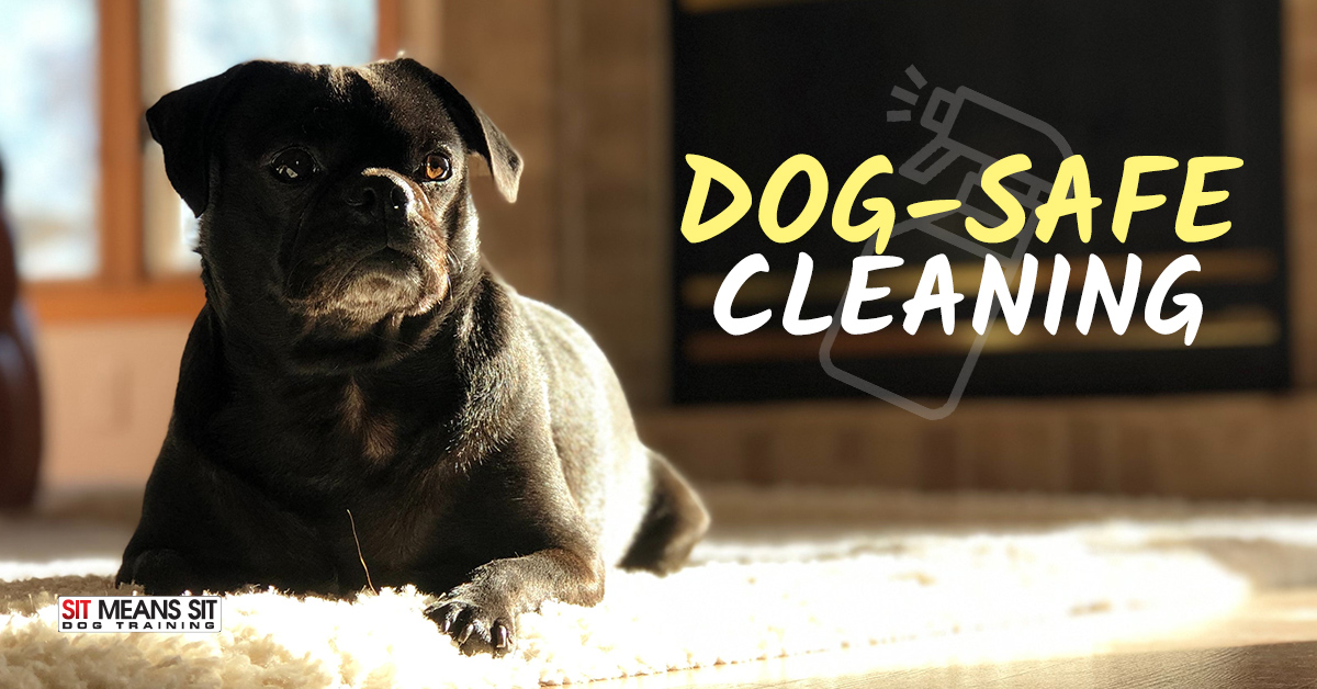 Household Cleaning Products that are Safe for Dogs | Sit