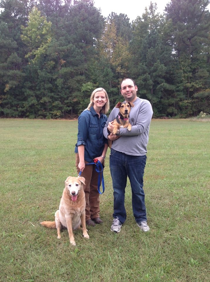 Dog Obedience Training Cary Nc
