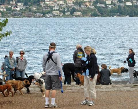 Magnuson Small Dog Park