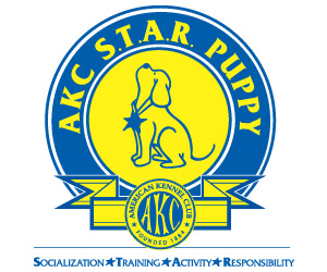 AKC STAR Puppy Programs Austin San Antonio