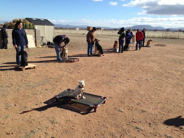 Dog Training Sierra Vista