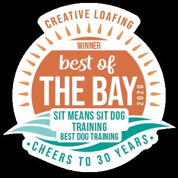 2020 Best of the Bay Dog Training Winner