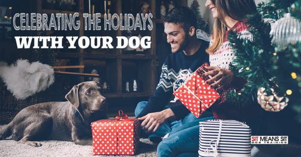 Celebrating the Holidays with your Dog