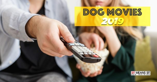 Movies About Dogs in 2019