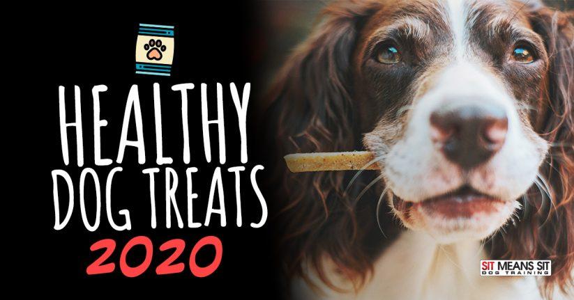 Healthy Dog Treats 2020